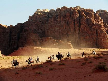 horses in wadi rum , Jordan Experience Tours and Travel
