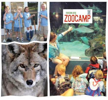 Minnesota Zoo Camp