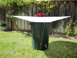 59 inch RainSaucer™ on 32 gallon barrel