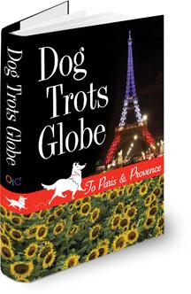 DTG_Book_3D