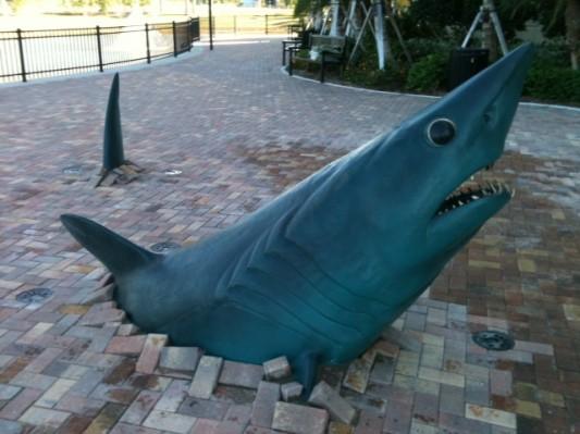 Nova Southeastern University To Unveil Kent Ullberg Shark