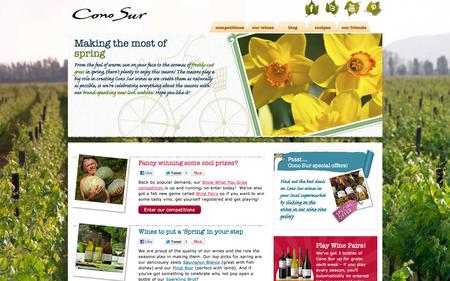 Cono Sur homepage