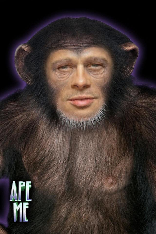 Brad Ape small