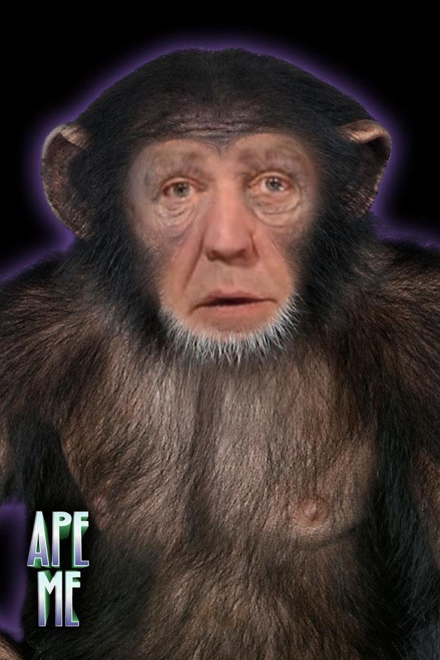 Top Gear Ape small