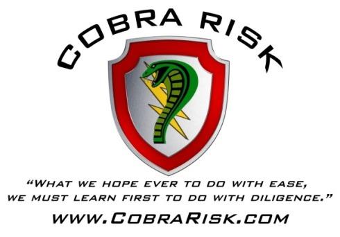 Cobra final with curve logoRisk