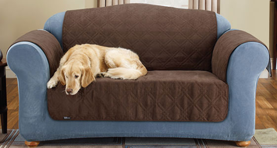 Pet Covers for your Home