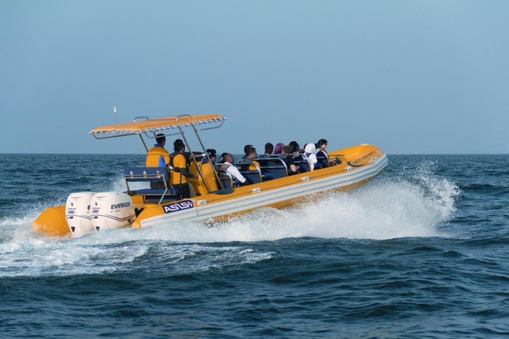 yboat-1