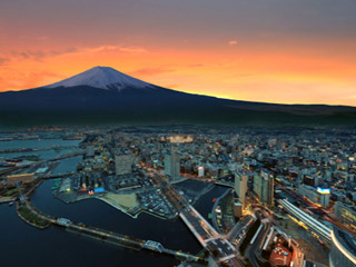 Explore Japanese trade opportunities