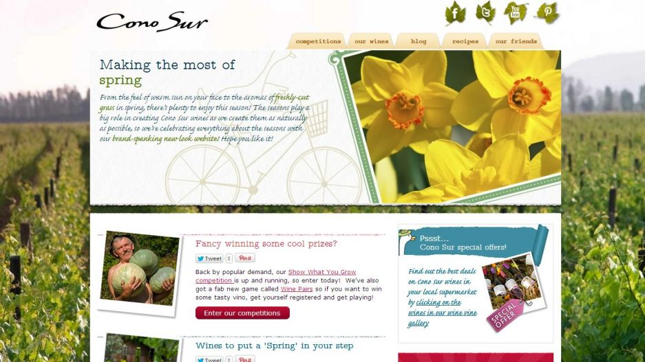 Cono Sur Seasons -homepage