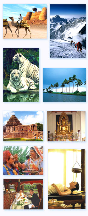 tours-of-india