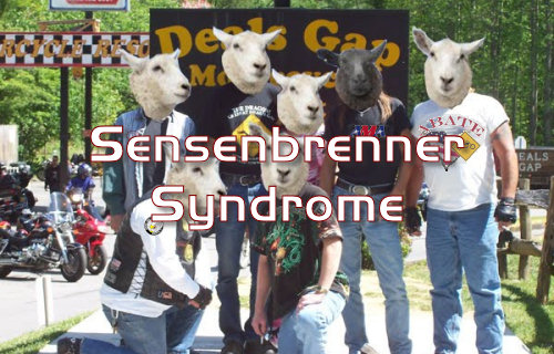 Many American Bikers Suffer From Sensenbrenner Syndrome.  Do You?