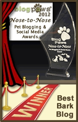BlogPaws 2012 Award