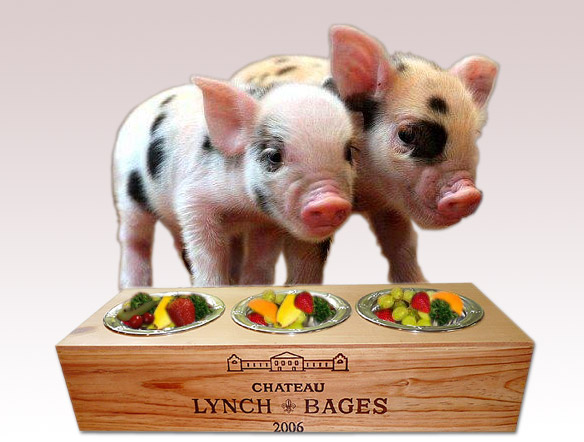 How to care for your teacup mini pig whiner and diner prlog teacup pig feeders publicscrutiny Choice Image