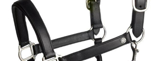 Headcollars from Townend Online