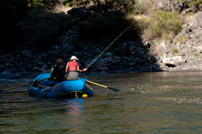 Fly Fishing Gold Medal Waters in Idaho