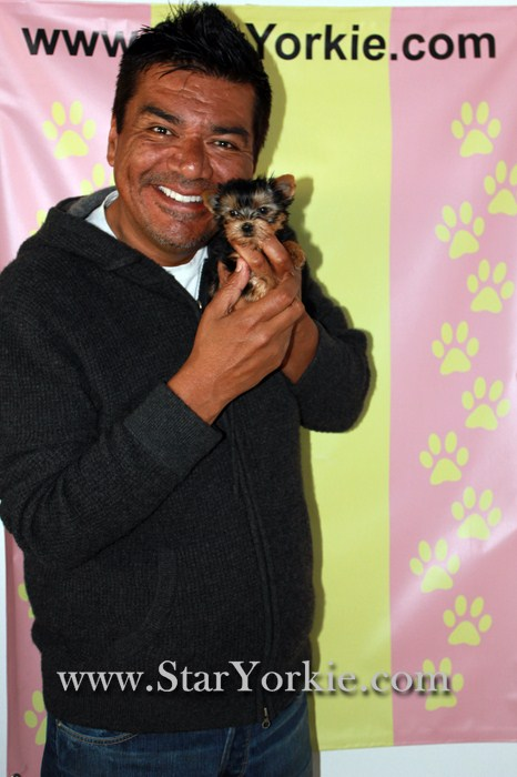 celebrity-actor-george-lopez-with-new-star-yorkie-