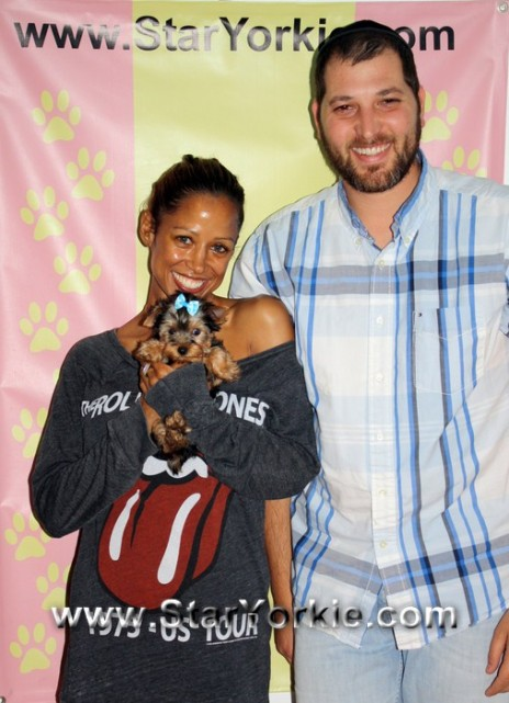 stacey-dash-her-new-teacup-yorkie-puppy-with-syk-o
