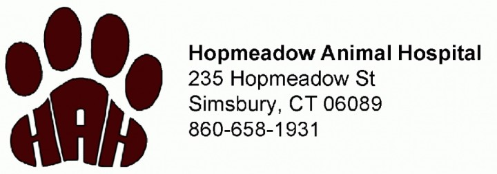 Hopmeadow Animal Hospital