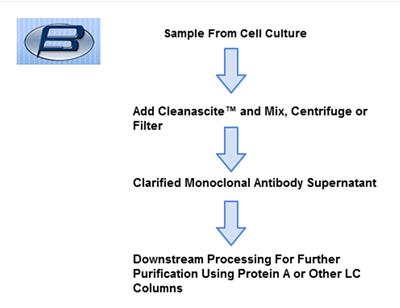 bsgcleanasciteascites