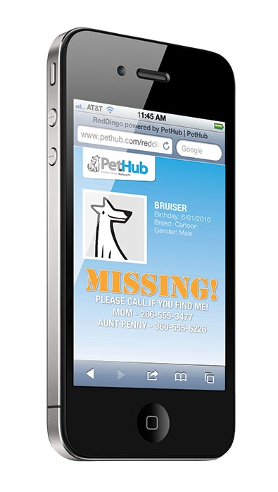 Internet Start Up Raises Pet Safety Bar Lowers Price For
