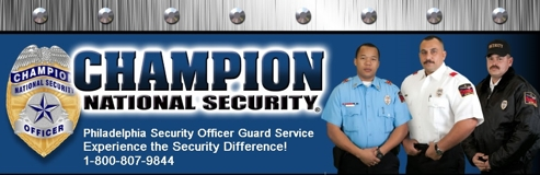 Professional Security Solutions