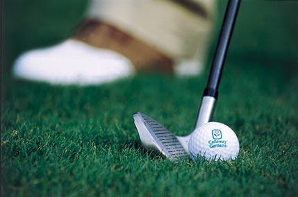 Callaway Gardens Hosts Tenth Annual Ida Cason Callaway Foundation Golf Tournament Callaway