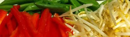 veganrestaurantschicago-header
