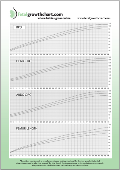 Fetal Growth Chart sample
