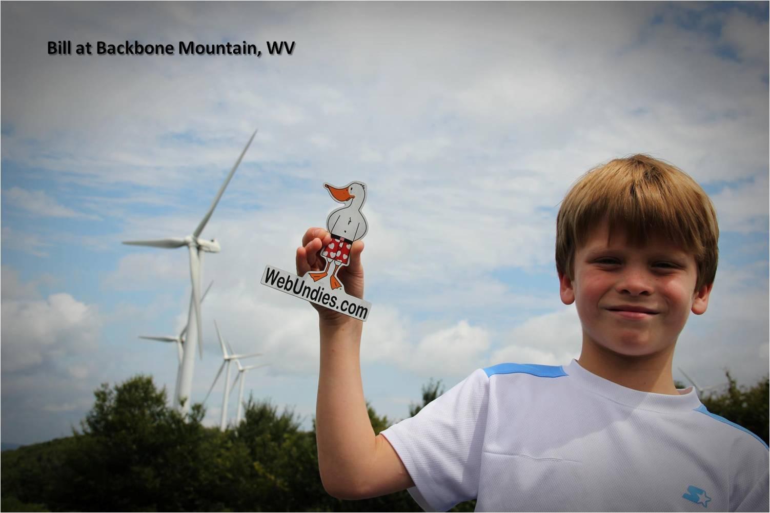 Bill visits WV windmills with a friend