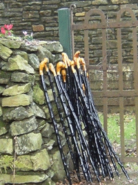 blackthorn_sticks