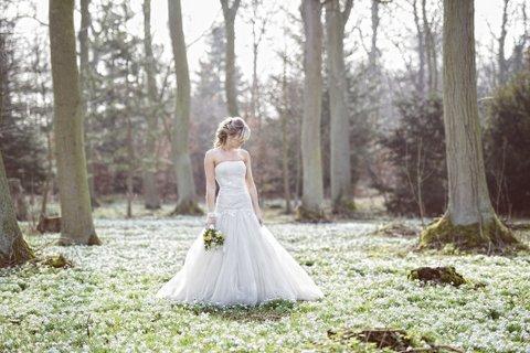 Hodsock Priory Snowdrop Weddings