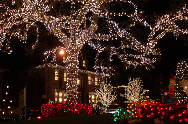 Christmas Lights & Cannoli Tour - 2