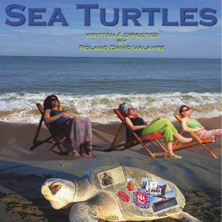 Sea Turtles - A Play