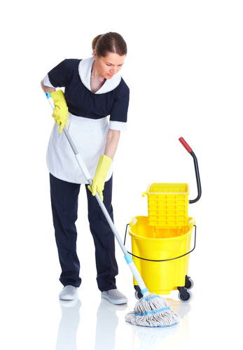 Cleaning Business Software