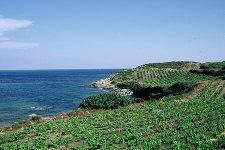 CIV Corse
