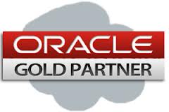 Oracle Gold Partner - Stonefield Query