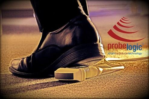 probesquashedwithlogo