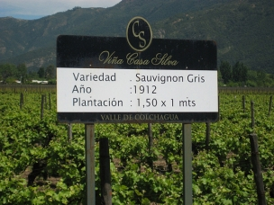 Award-winning winery in Chile's Colchagua Valley