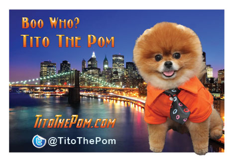 titoThePom-Card2w