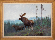 Carl C.M. Rungius (German/American, 1869-1959),'Moose on a Ridge,'
