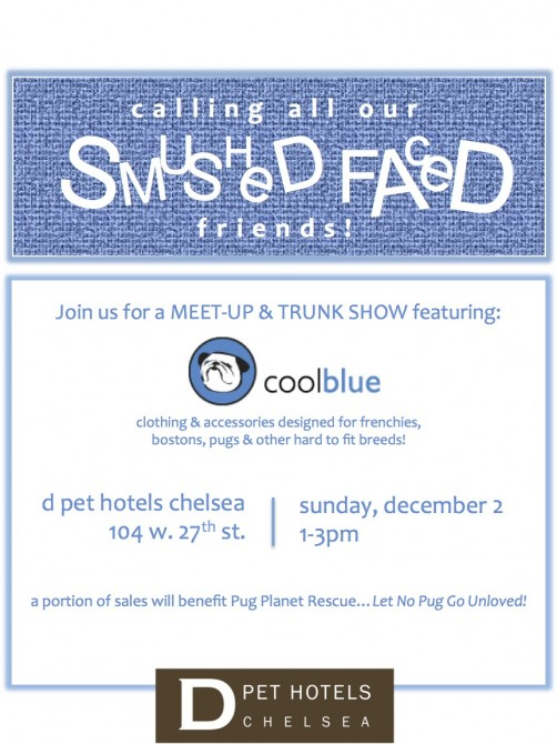 Smushed Face Trunk Show - Final