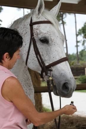 Nan Martin of Experience Essential Oils with her horse Roxie