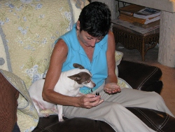 Nan Martin selecting an essential oil for Lola, one of her dog clients