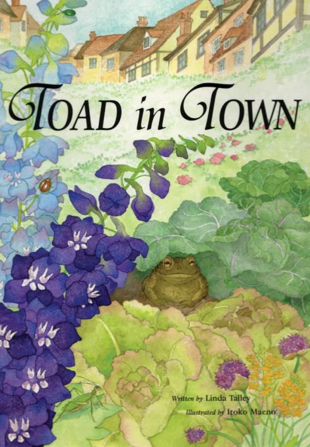 Toad_Amazon