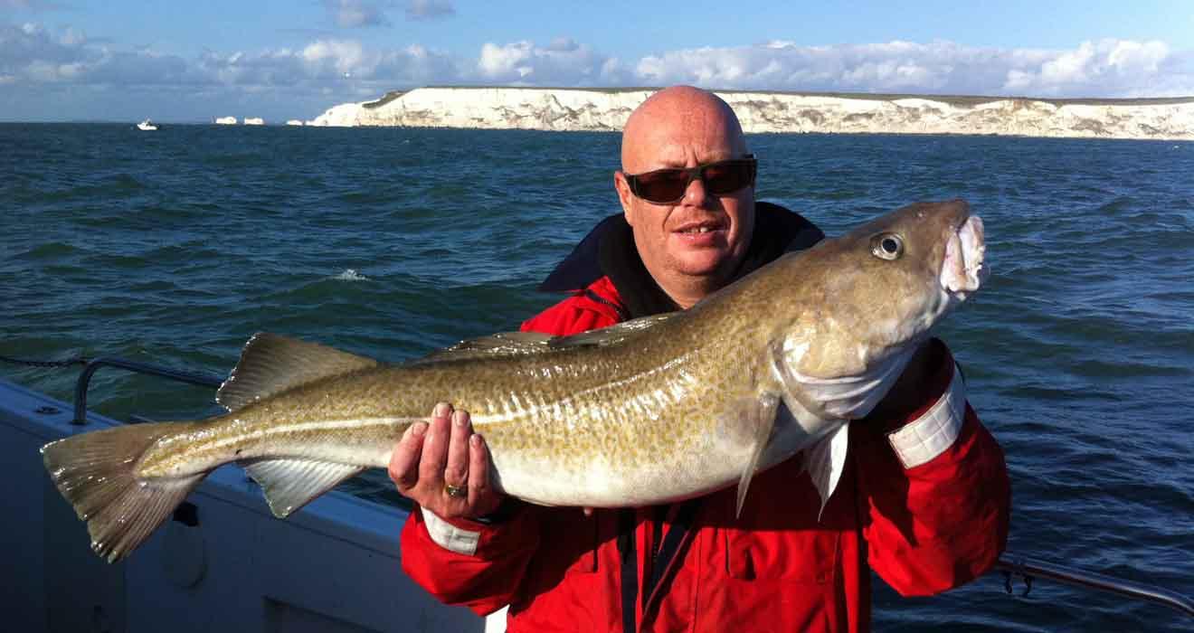 Cod catch
