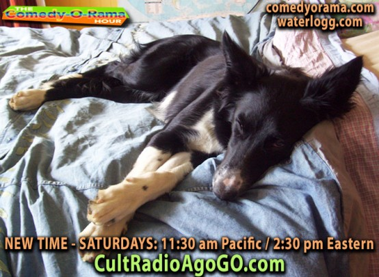 New Comedy-O-Rama Saturday 2:30 pm ET - listen online for free at cultradioagogo