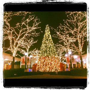 Holiday Evenings at Westfield Old Orchard