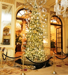 Gatsby Tree at Plaza Hotel