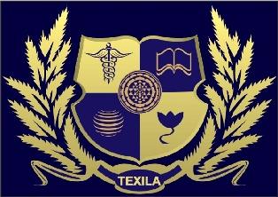 Texila Logo