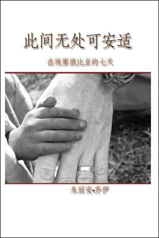 Where There Is No Comfort - Chinese Translation